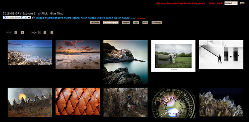 Flickr Hive Mind