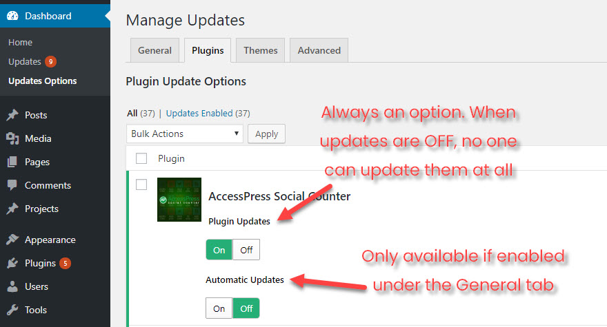Manage WordPress Updates