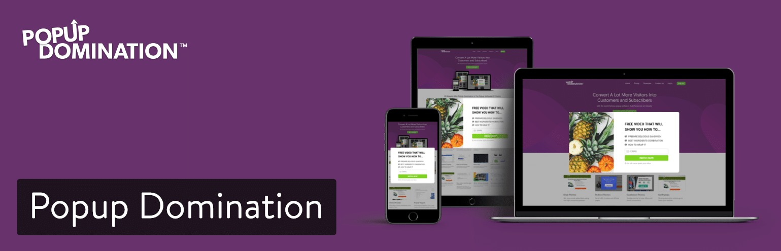 Popup Domination WordPress plugin