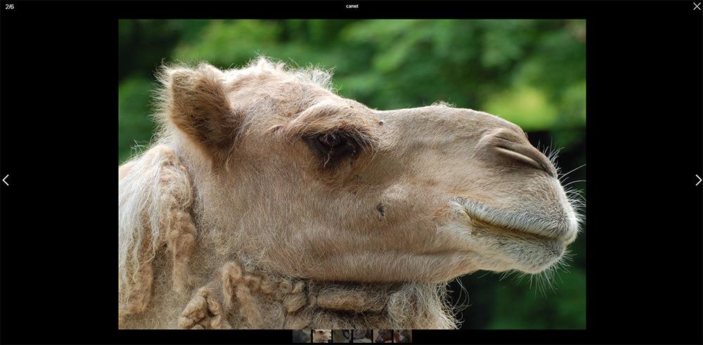 smartphoto plugin examples