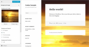 wordpress-appearance-screen