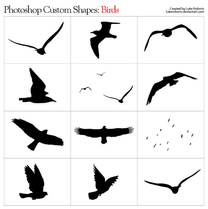 custom-shapes-birds
