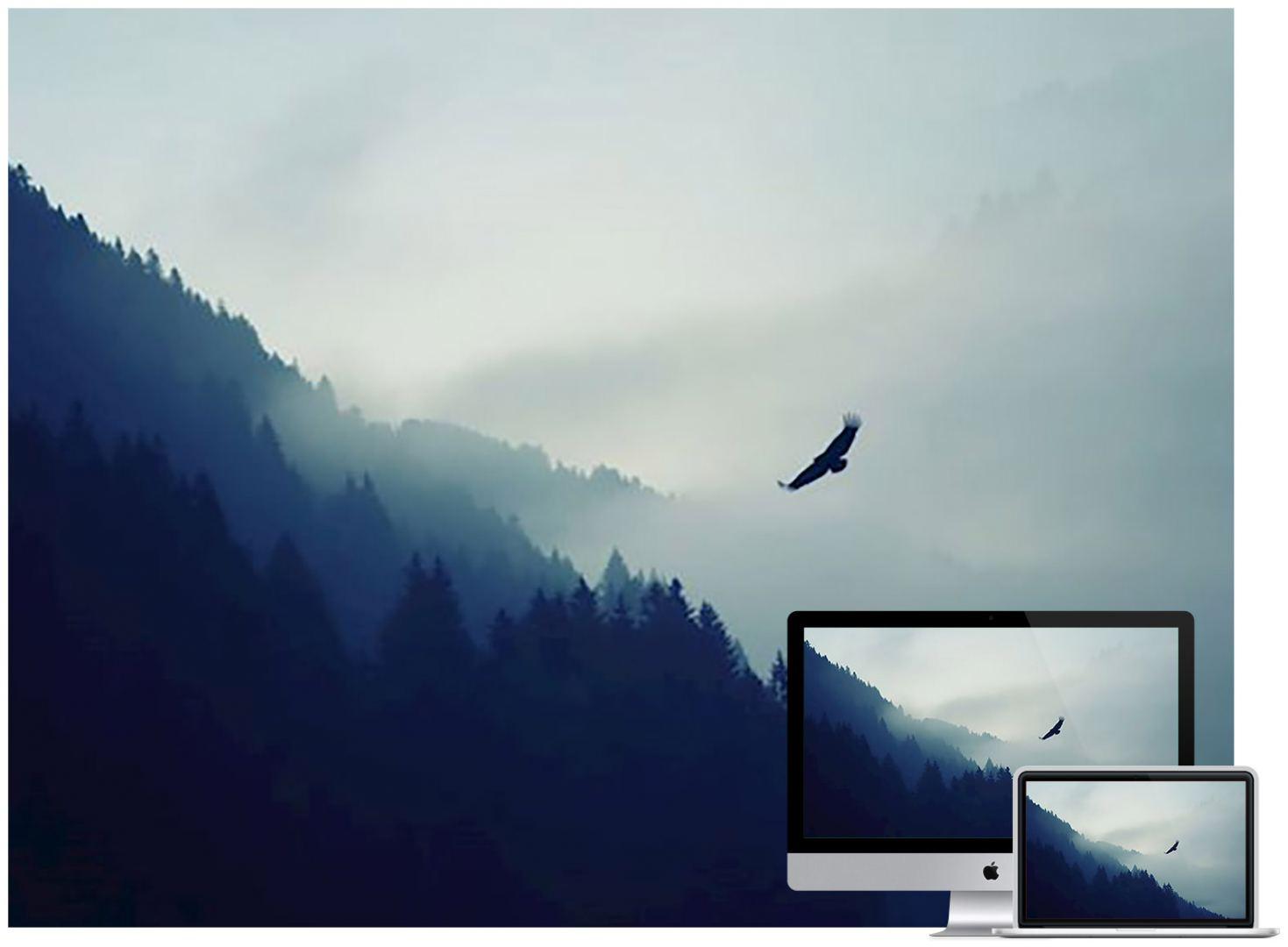eagle-fog-mountains-wallpaper