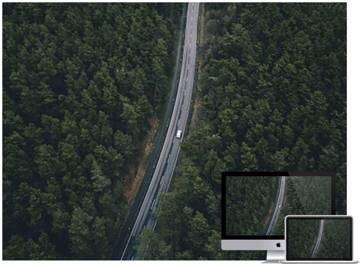 road-trees-top-view-wallpaper