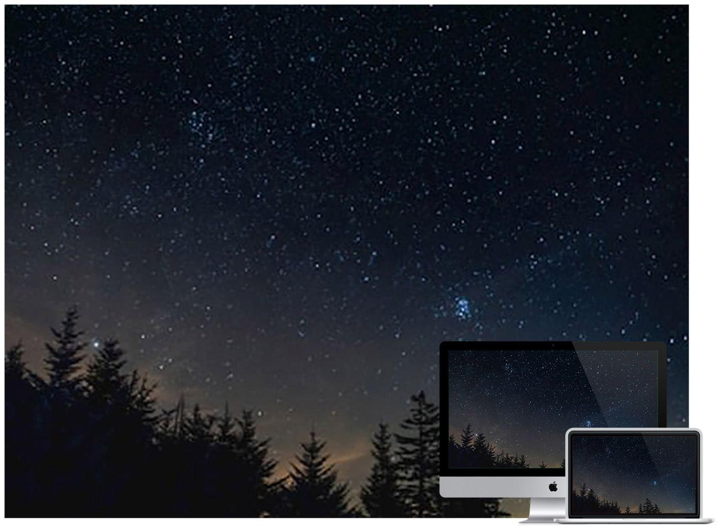 starry-sky-night-trees-wallpaper