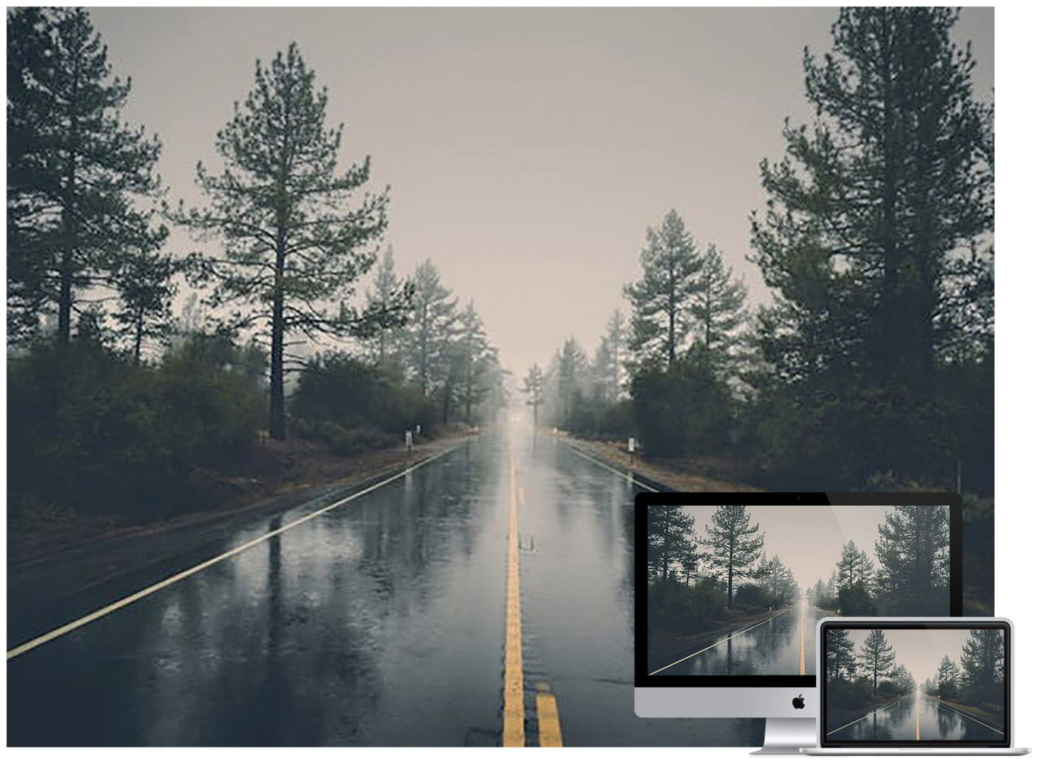 wet-road-forest-wallpaper