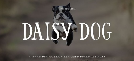 The Daisy Dog font.