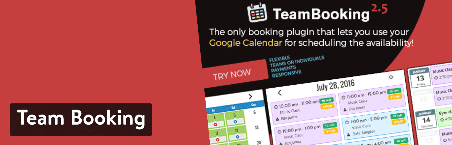 Team Booking plugin