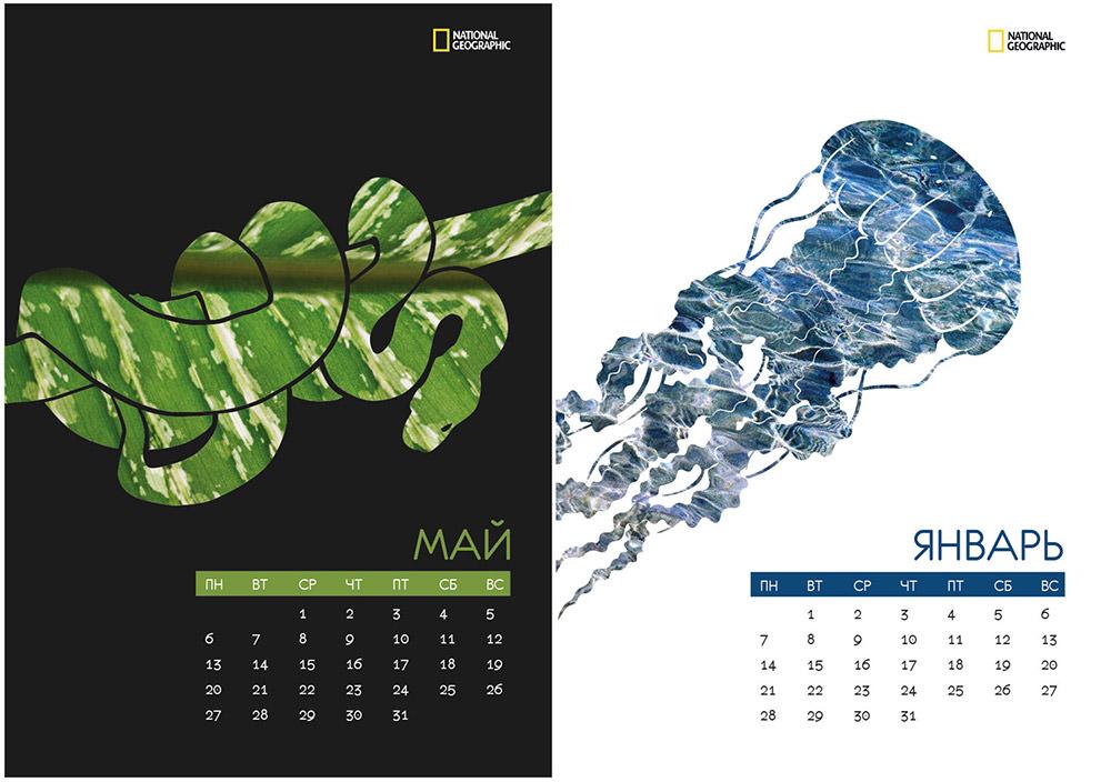 Nat Geo Calendar