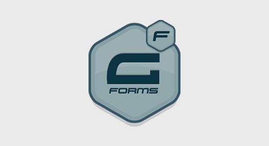 Gravity Forms WordPress form plugin