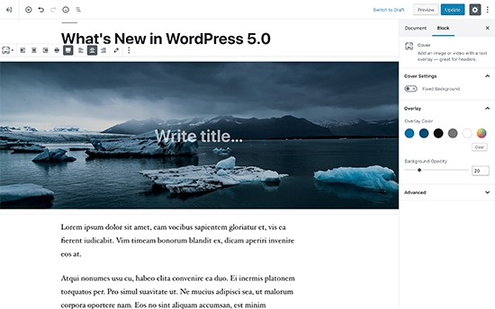 New WordPress editor called Gutenberg block editor