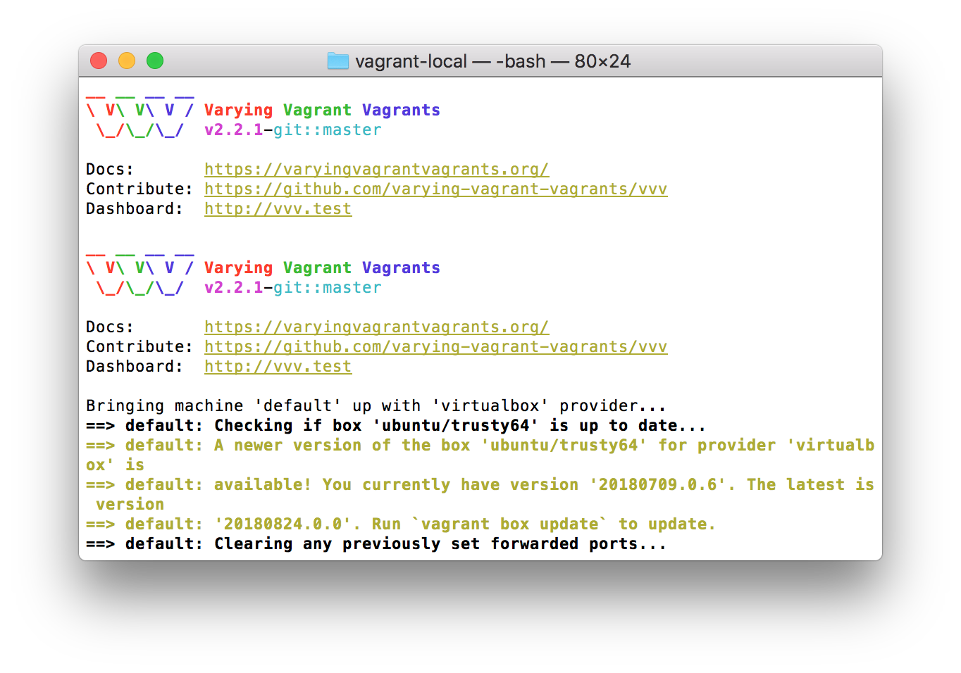 Using the vagrant up command.