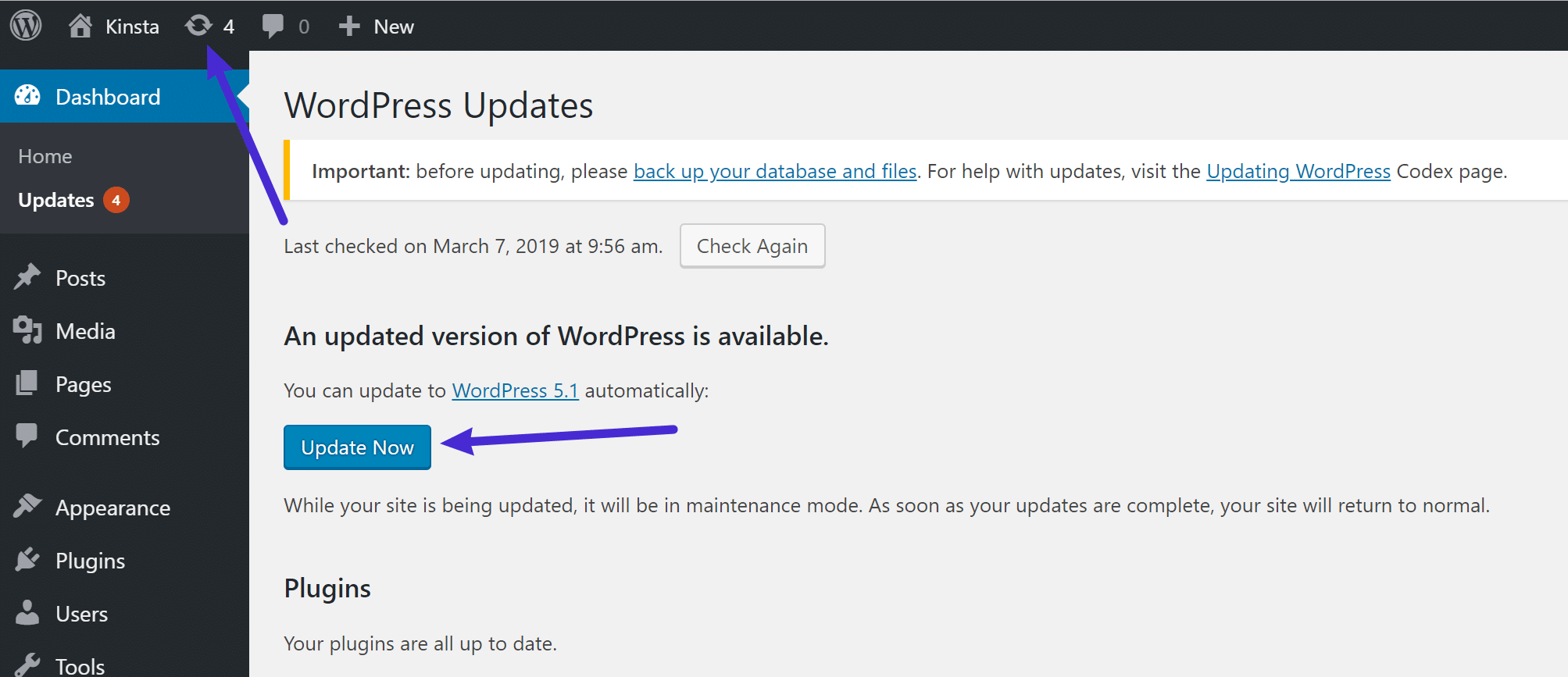 How to update to WordPress 5.1