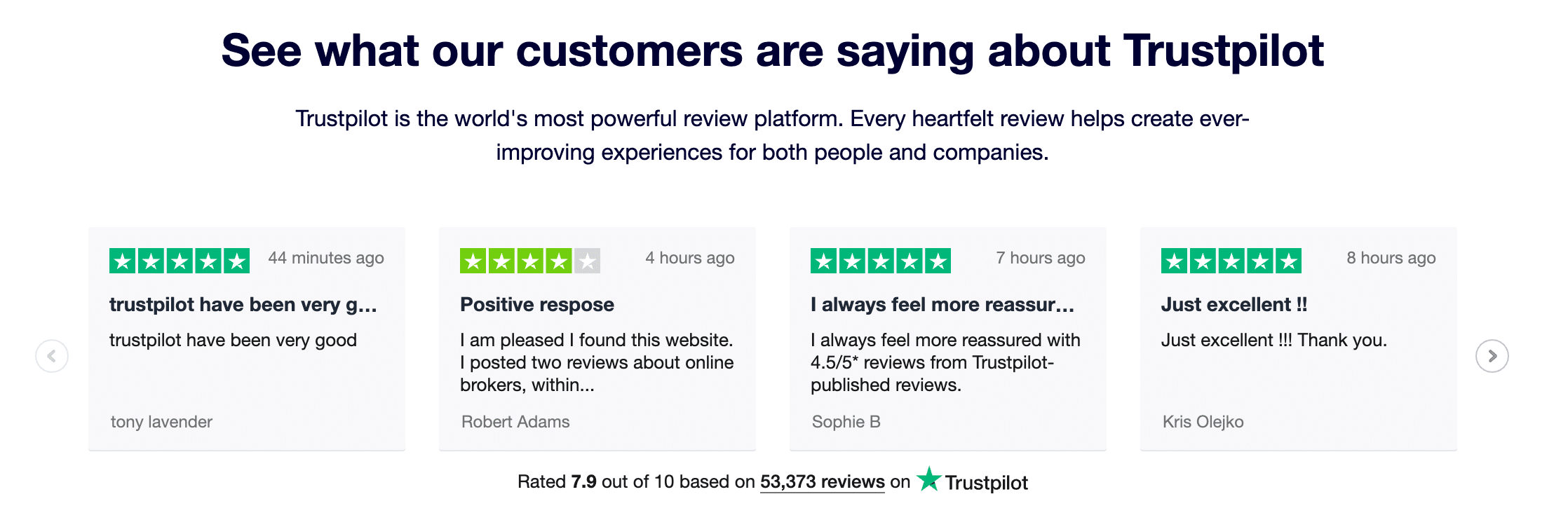 Ecommerce customer reviews