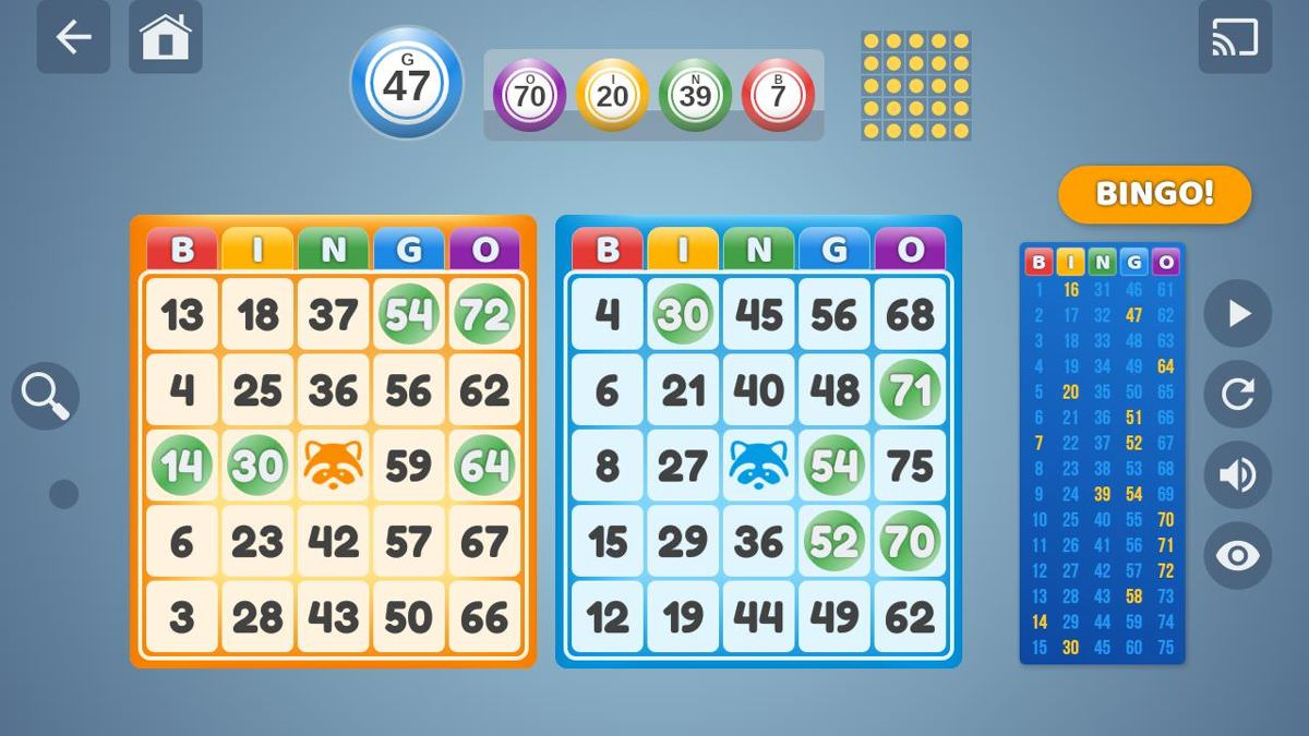 Enjoy a bingo game with Bingo Set
