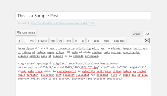 Fullscreen Classic WordPress Editor in Text Mode