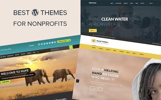 21 Best WordPress Themes for Nonprofit Organizations