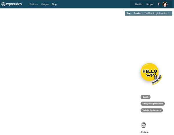 Screenshot of WPMU DEV blog page half loaded
