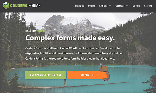 Screenshot of Caldera Forms Home Page