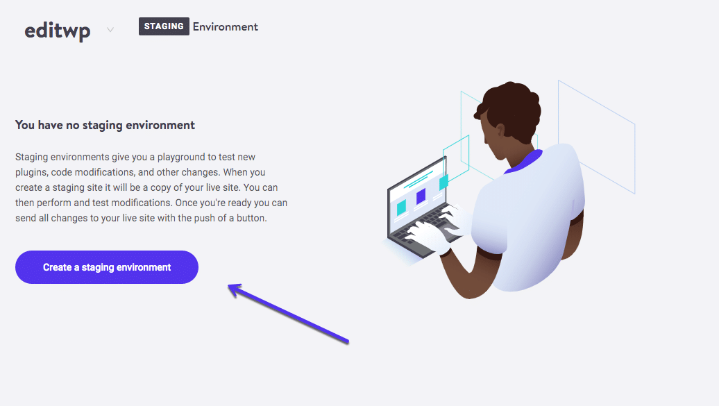 Kinsta staging environment