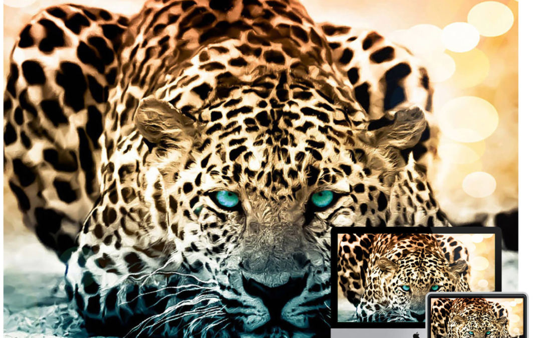40+ Amazing Wildlife & Animal Wallpapers