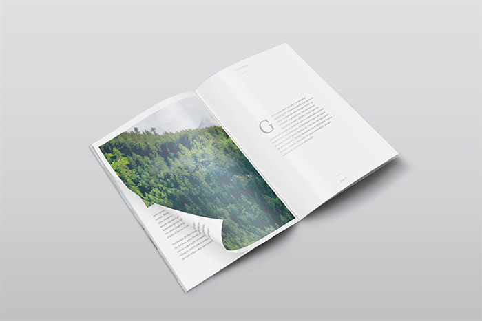 30+ Free Magazine PSD Mockups to Download