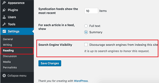 Check Website's Visibility Settings