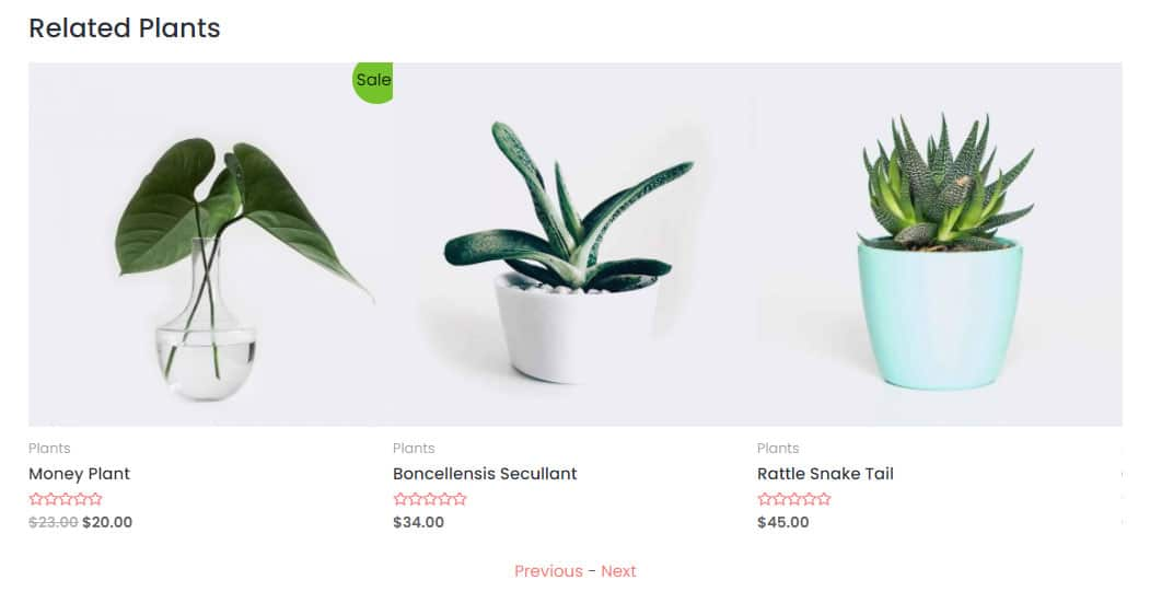 The 'related products' slider in a product page