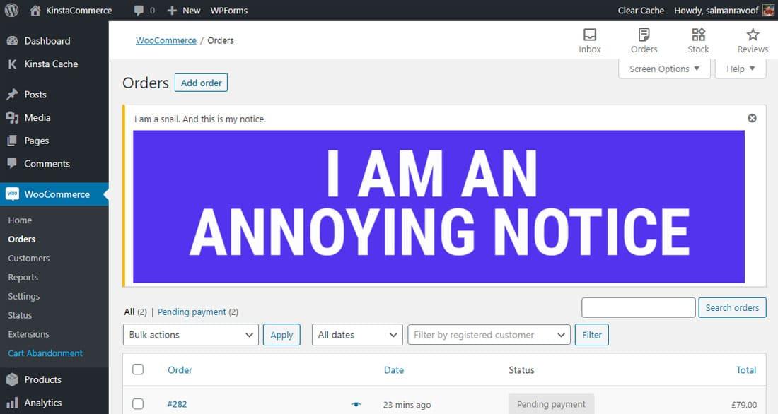 An annoying WordPress notice example
