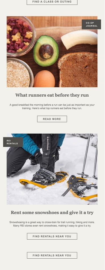 Email Newsletter Example: REI
