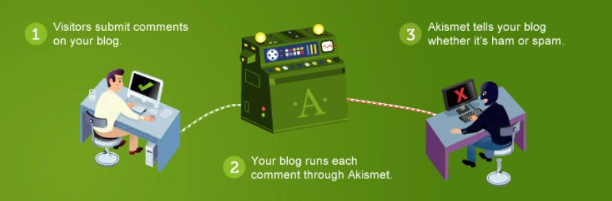 akismet is one of many wordpress maintenance tools