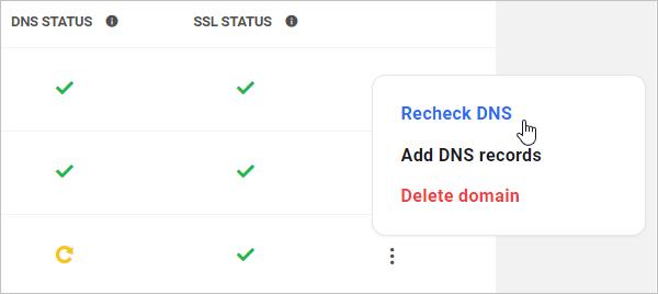 Check DNS Status
