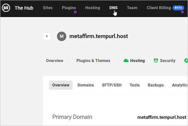 The Hub DNS tab