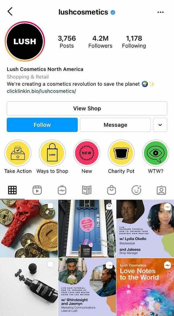 lush instagram profile example of social media content marketing on instagram