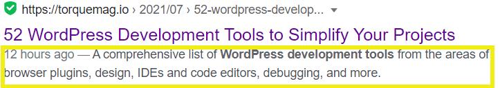 A highlighted example of a meta description.