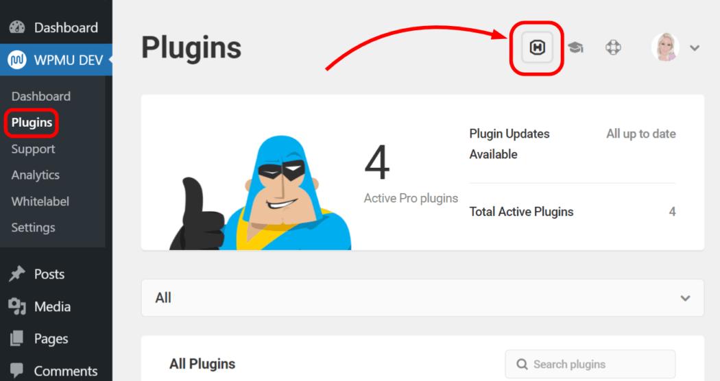 Hub icon in WP dashboard