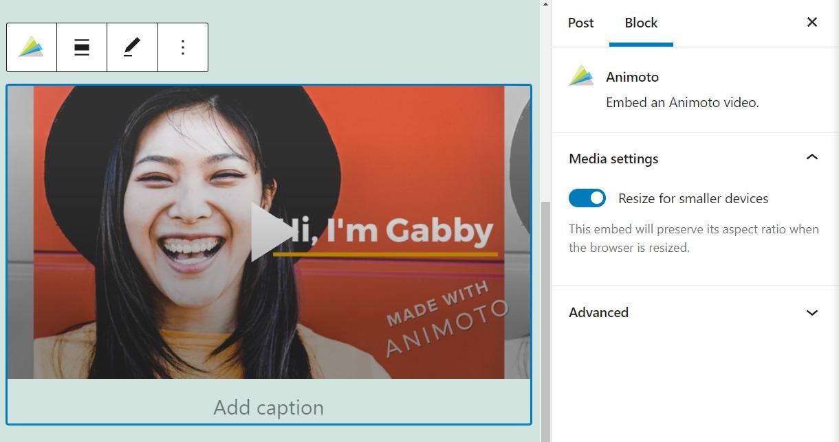 An embedded Animoto video in WordPress