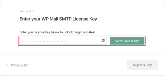 Enter Your WP Mail SMTP License Key