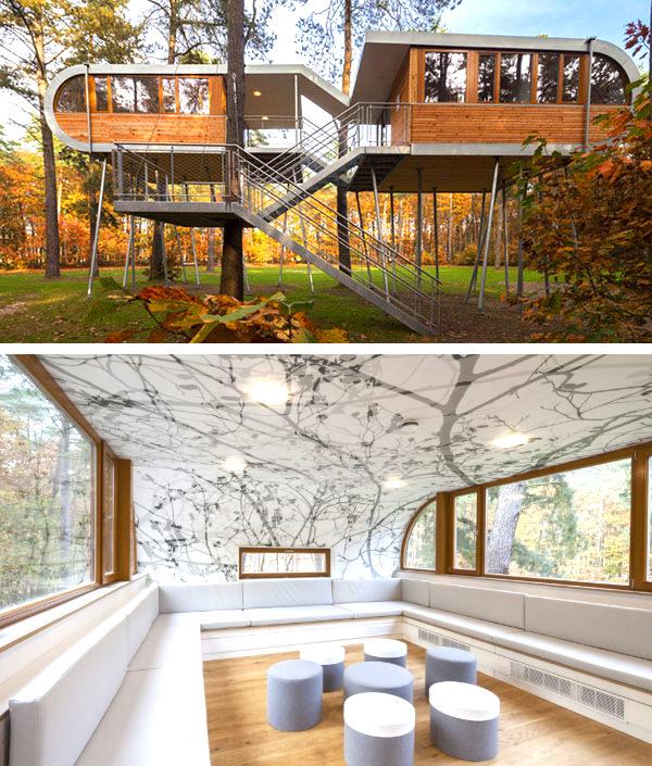 the tree house baumraum