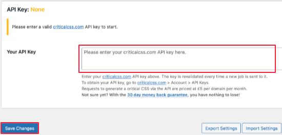 Paste Your Critical CSS API Key