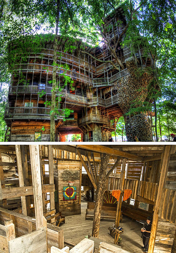 world's biggest tree house by horace burgess