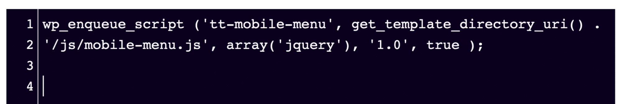 Snippet can be pasted into any FTP editor, so long as it's in the script-loader.php file.