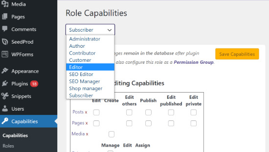 Select user role capabilities