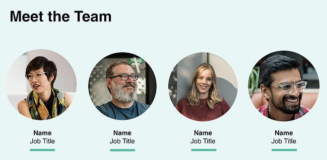 Team section template for company profile