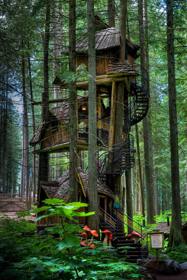 The Enchanted Forest Treehouse