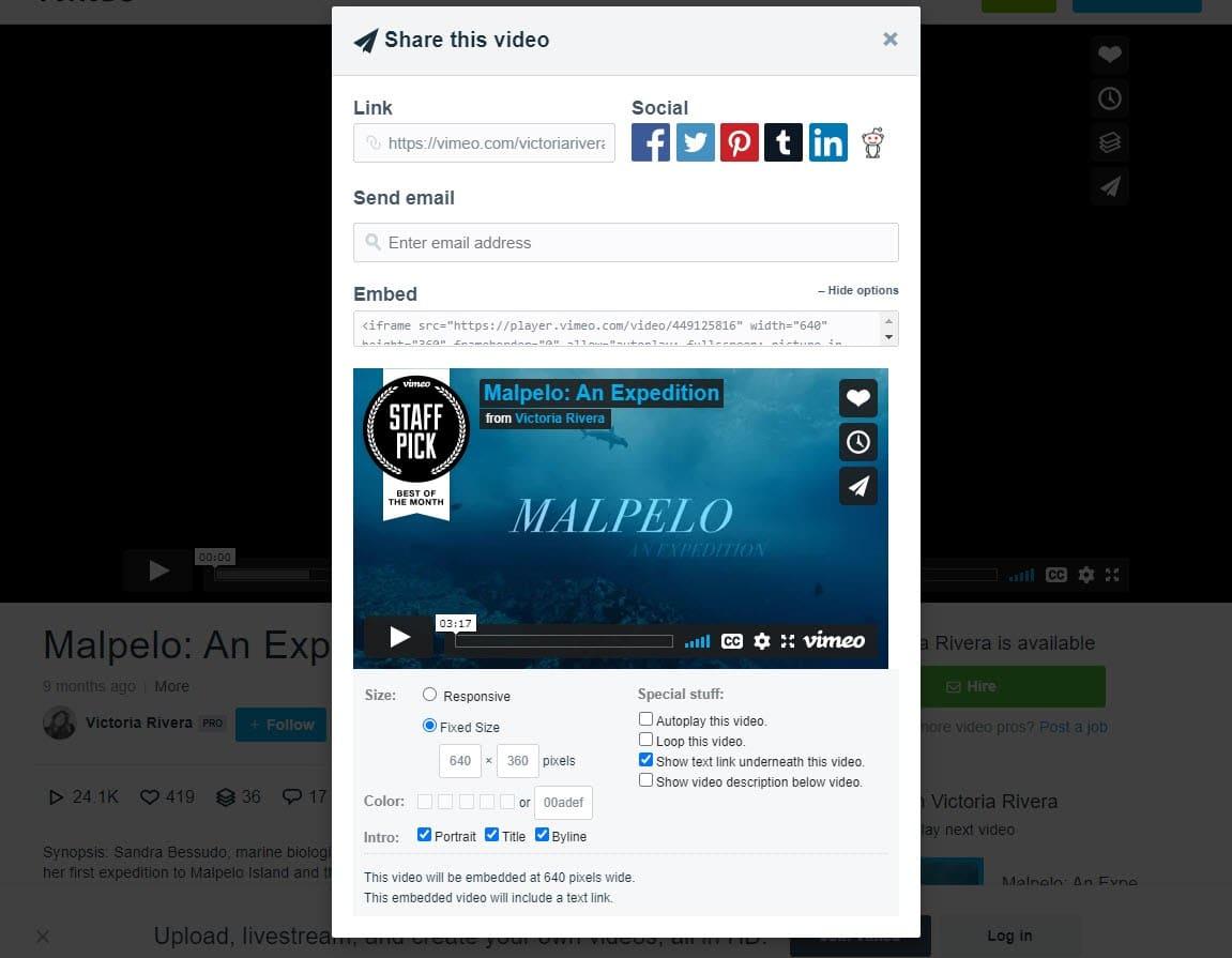 Vimeo video embed options screenshot.
