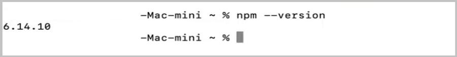 Checking npm version on macOS.
