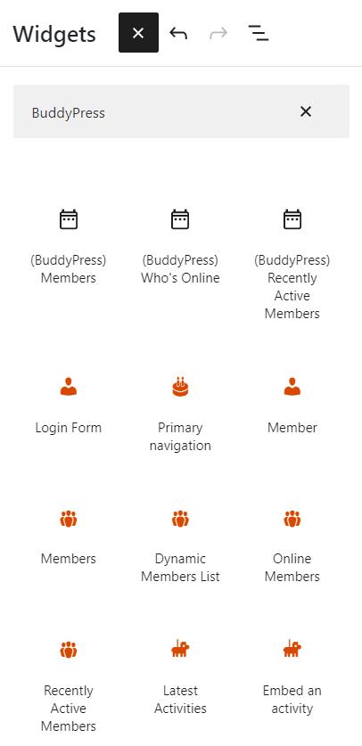 The widget blocks from the BuddyPress 9.0 update.